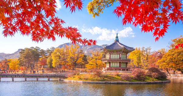 South Korea May Have to Postpone Crypto Taxation, Lawmaker Declares