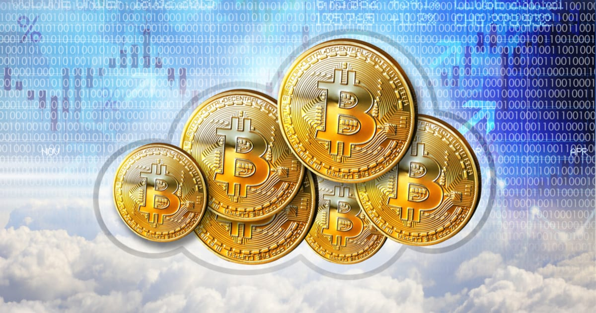 Bitcoin Could See Another Bull Run Soon as Pompliano Hints at a Major Government BTC Development