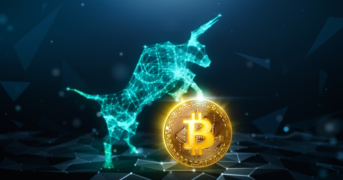 Bitcoin's Present Bull Run Has Been Extraordinary Compared to the 2015-2017 Bull Cycle - Peter Brandt