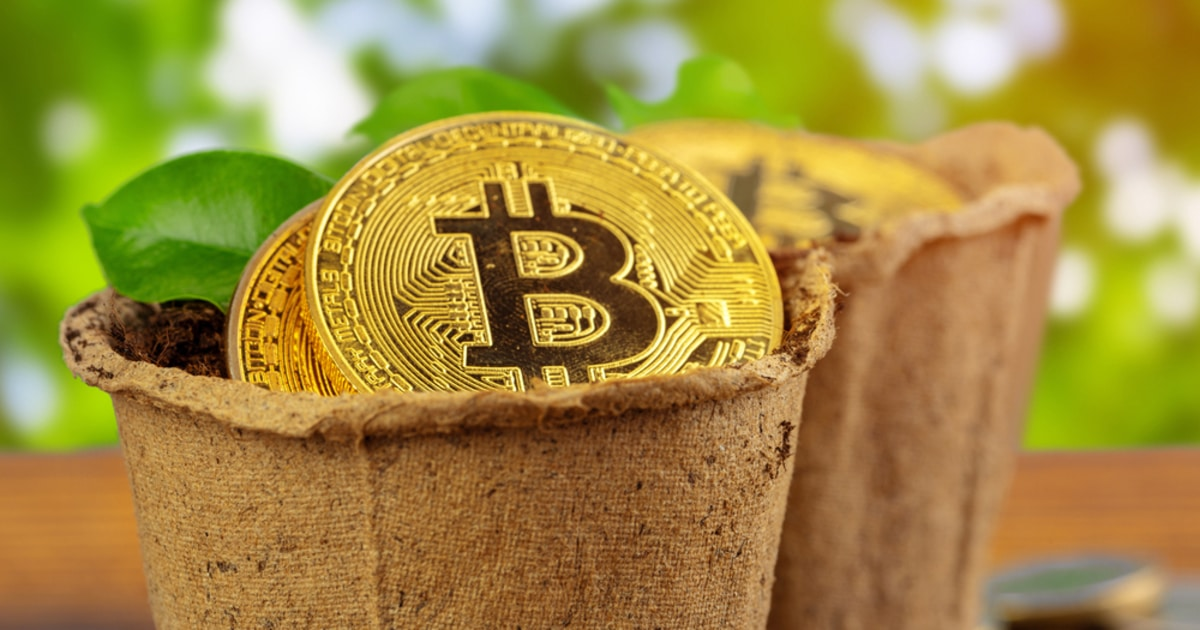 Why Bitcoin Plunged to $42K before Spiking Back to $45K