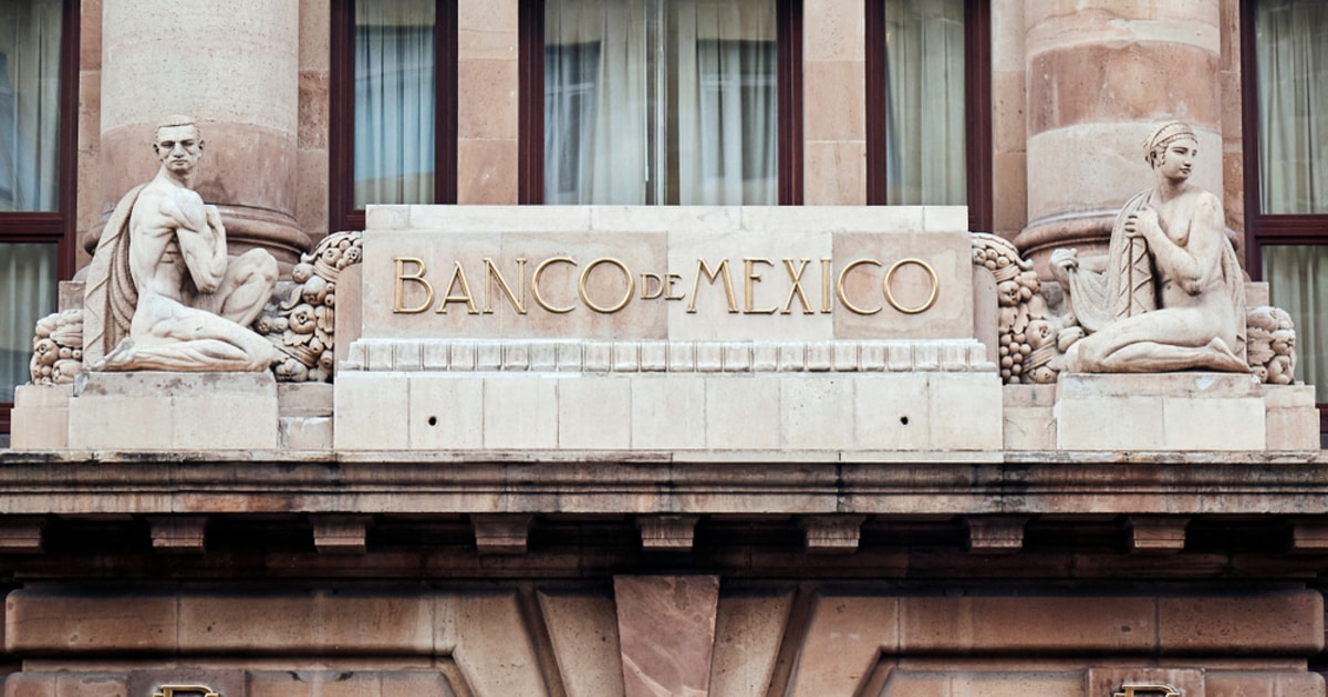 Mexico Turns Down Bitcoin development after Millionaire's Crypto Pitch