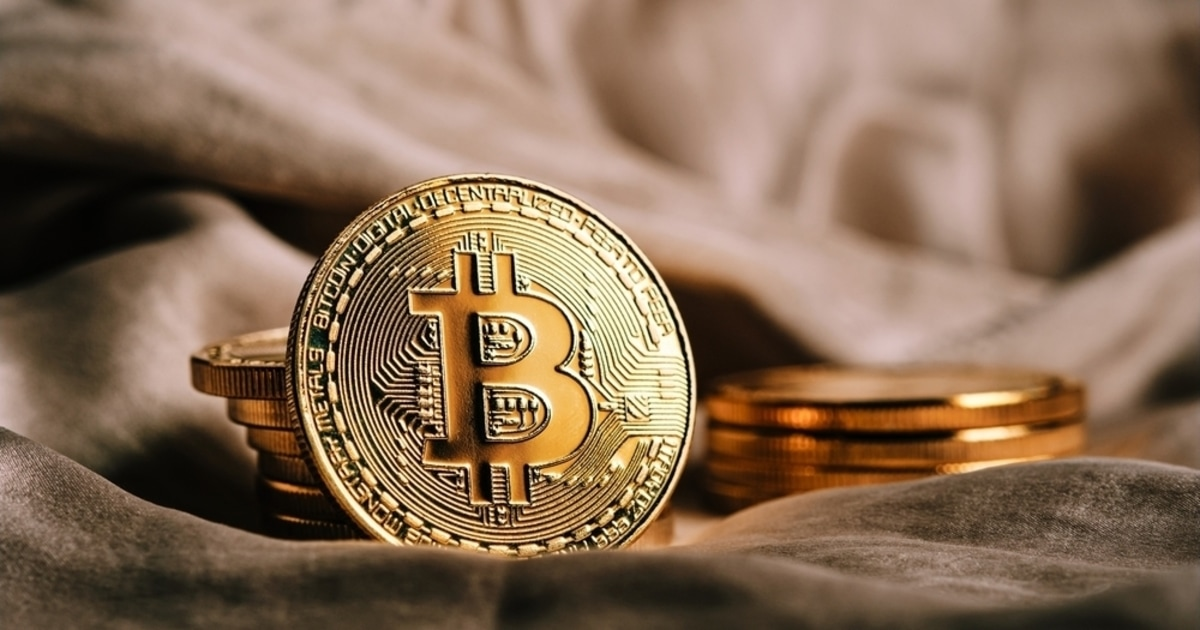 Bitcoin Holdings in Public Company Treasuries Exceed 200,000 BTC