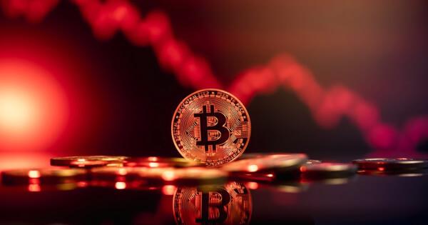 'Black Swan' Author Slams Bitcoin, Calls It a 'Gimmick' and a Ponzi Scheme