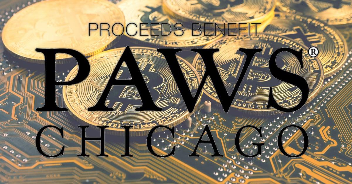 No-Kill Animal Organization PAWS Chicago Launches