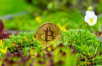 Bill Miller: Bitcoin- Still A Safe Investment Despite Market Crash