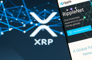 Ripple Labs Breathes Sigh of Relief as Federal Judge Wants XRP Token Holders to Present their Views