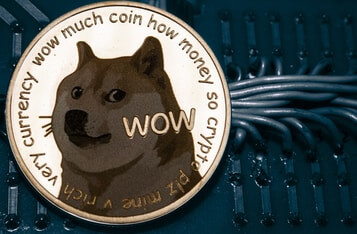 DOGE Price Frenzy: Mike Novogratz and Peter McCormack Warn Dogecoin Bull Run Will End Poorly