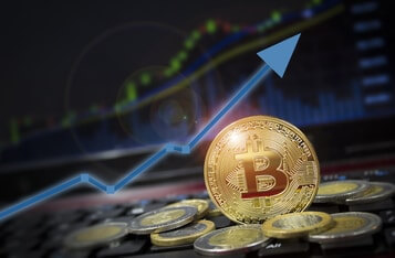 Bitcoin Price Is Approaching Euphoric Levels as Addresses with More Than 1000 BTC Hit All-Time High